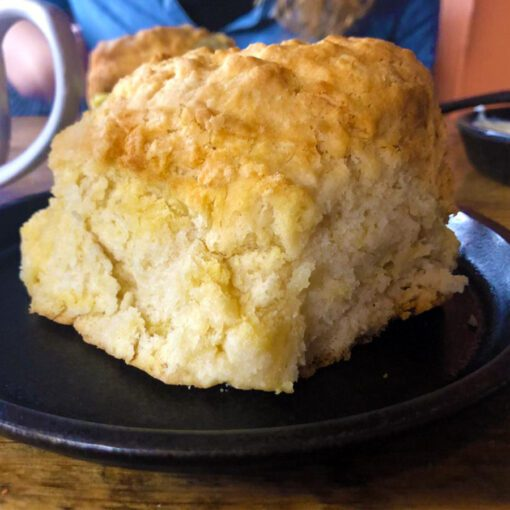 Giant Biscuit